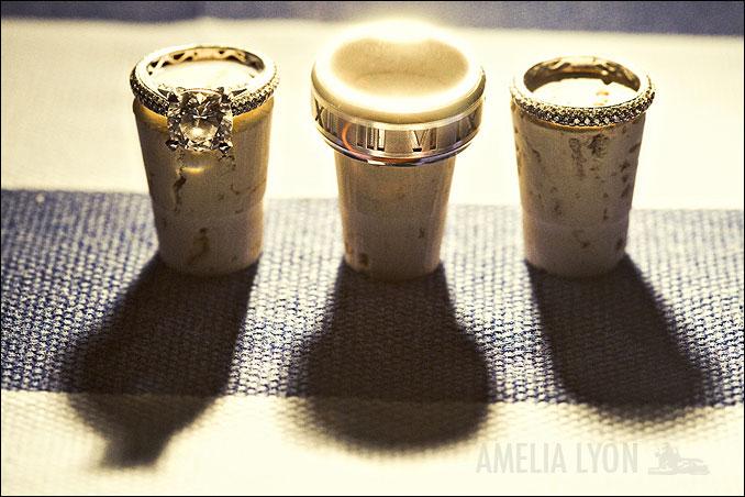 rings013.jpg