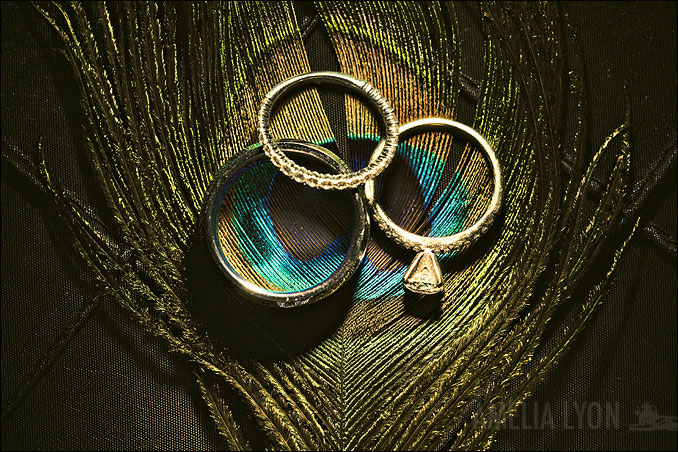 rings015.jpg
