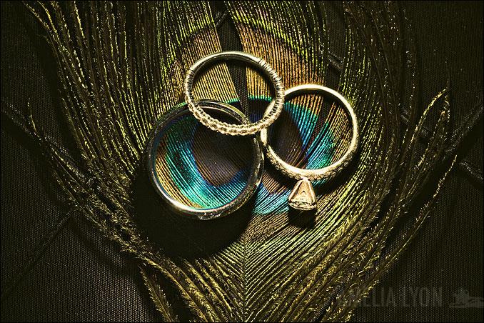rings015.jpg