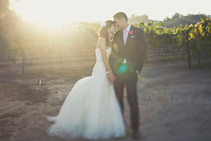 bestof2013_weddingphotography_amelialyon_orangecountyweddingphotographer_053.jpg
