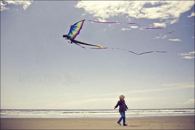 kites004.jpg