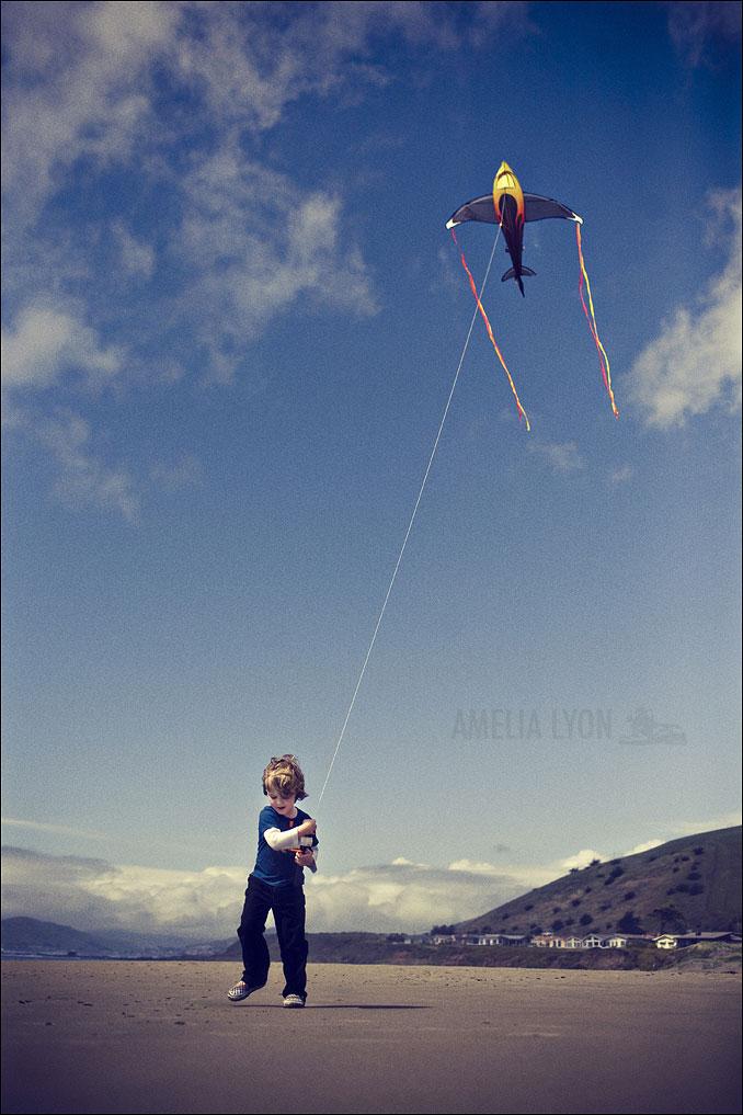 kites012.jpg