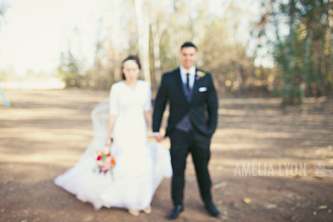 naturewedding_fresno_pjwed_amelialyonphotography_southerncaliforniawedding_020.jpg
