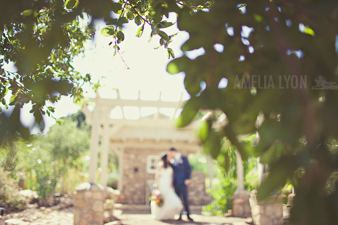 ojai_wedding_californiawedding_amelialyonphotography_gbwed_colorfulwedding_019.jpg
