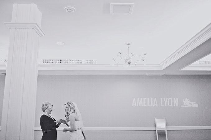 sandiegowedding_hoteldel_coronado_amelialyonphotography_wedding_kellyandrob004.jpg